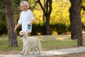 caregiver strolling around with a dog